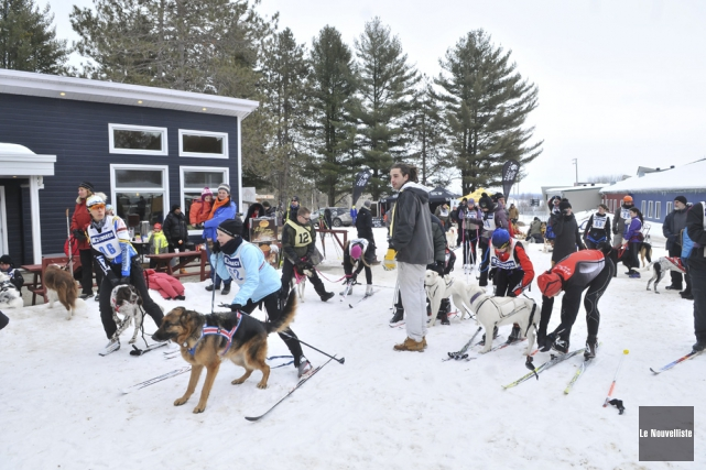 Plus de 60 personnes et autant de chiens... (Photo: Émilie O'Connor, Le Nouvelliste)