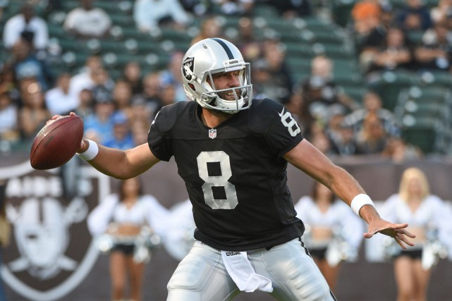 Matt Schaub... (Photo Kyle Terada, USA TODAY Sports)