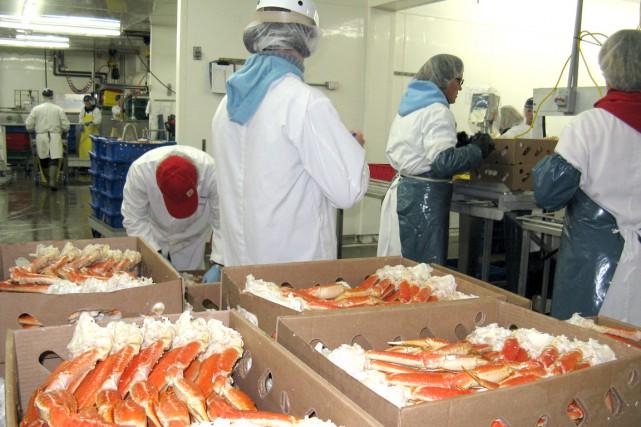 Chez E. Gagnon, où l'on transforme du crabe... (Collaboration spéciale Geneviève Gélinas)