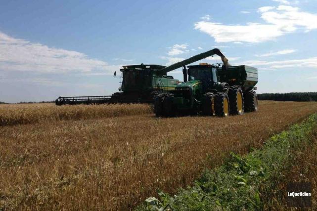 Les terres agricoles, c'est comme de l'or: il... ((Archives Le Quotidien))