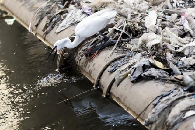 Les excréments humains et les eaux usées sont une mine potentielle de métaux... (Photo: Reuters)