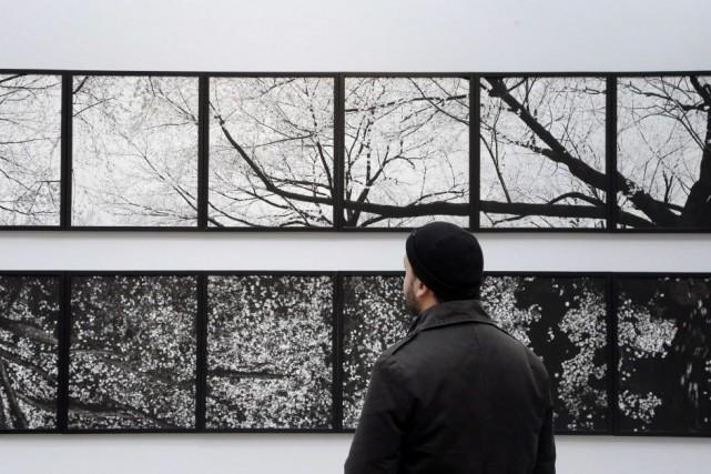 Un visiteur observe une oeuvre du photographe japonais... (PHOTO FRANCOIS GUILLOT, AFP)