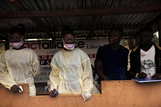 Apparue fin décembre 2013 dans le Sud guinéen,... (Photo: AFP)