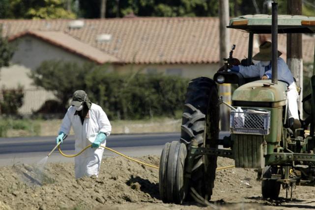 Les résidus de pesticides que l'on retrouve sur les fruits et légumes semblent... (Archives AFP)