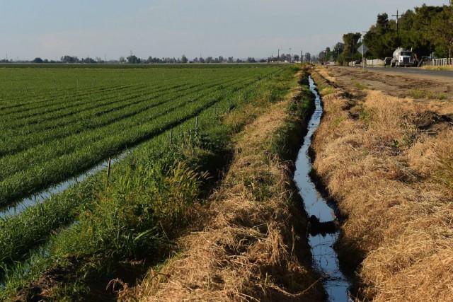 La sécheresse catastrophique qui touche l'ouest des États-Unis... (Photo FREDERIC J. BROWN, AFP)