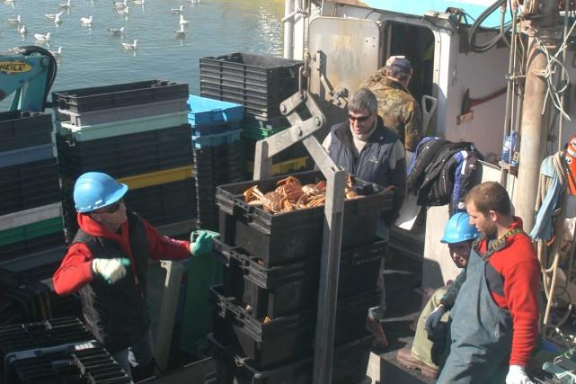 Les débarquements de crabe ont débuté modérément dans... (Collaboration spéciale Gilles Gagné)