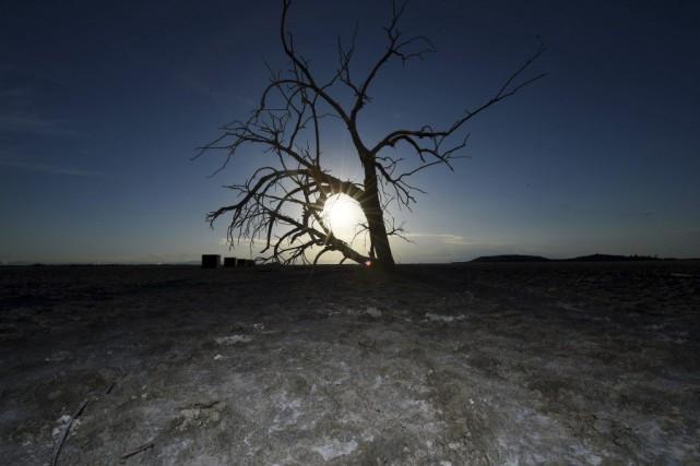 Des mesures d'urgence d'économies d'eau ont été annoncées... (PHOTO MARK RALSTON, AFP)