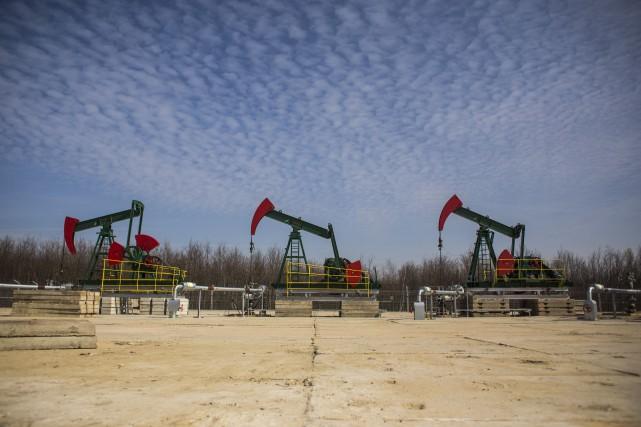 Les cours du pétrole ont chuté mercredi à New York et Londres, revenant... (PHOTO ARCHIVES BLOOMBERG)