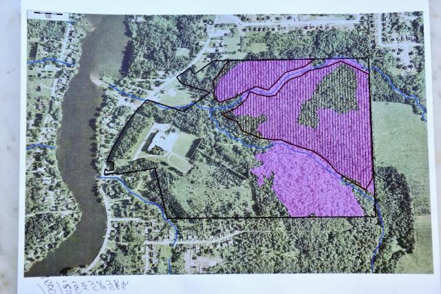 Les AmiEs du bois des Deux-Ruisseaux travaillent depuis 2008 à la sauvegarde... (Archives)