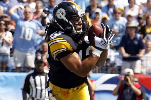 Troy Polamalu... (PHOTO REUTERS)