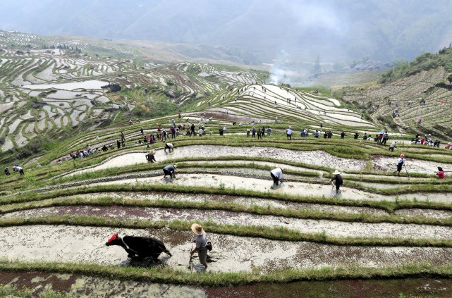 Les plus fortes différences entre régions rurales et... (PHOTO ARCHIVES REUTERS)