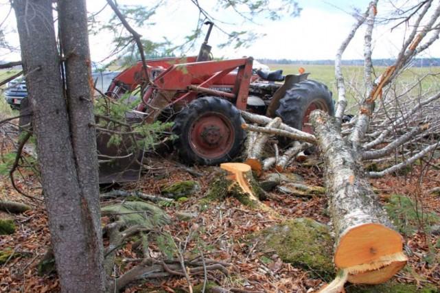 C'est une technique déficiente qui entraîne la perte de contrôle de l'arbre... (Photo CSST)