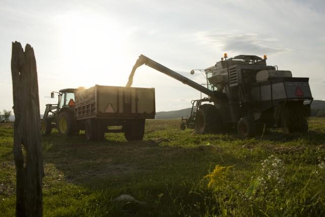 Les producteurs agricoles de la Mauricie qui sont... (Photo: Archives)
