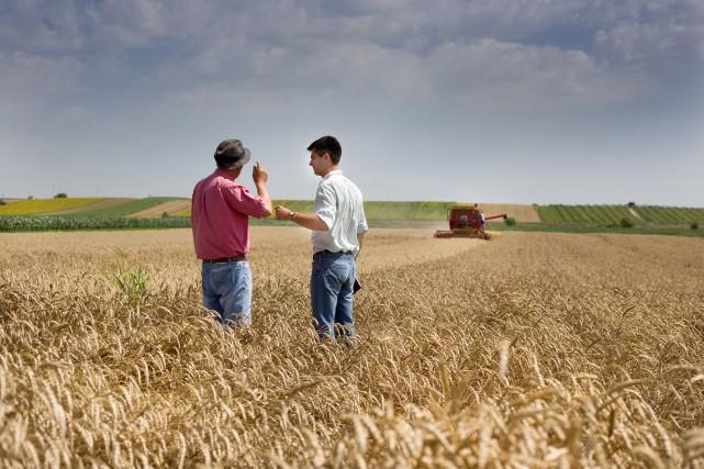 Souvent, les cédants vont rester dans l'entreprise pour... (Shutterstock, Budimir Jevtic)