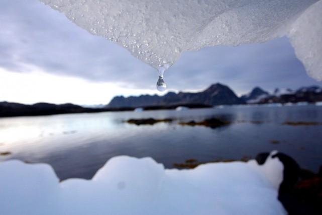 Selon le Programme des Nations unies pour l'environnement,... (PHOTO JOHN MCCONNICO, ARCHIVES AP)