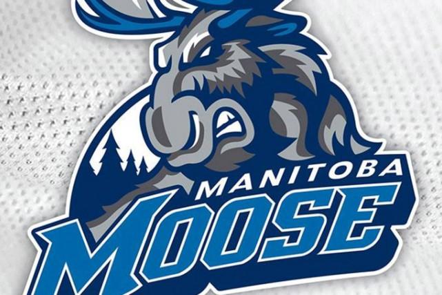 Après un intermède de quatre saisons, le Moose du Manitoba effectue un retour à... (Logo fourni par les Jets de Winnipeg)