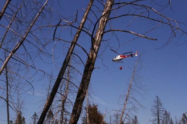 Le secteur du lac Beauchamp, à Gatineau a été fermé en raison d'un feu de... (Archives, LeDroit)