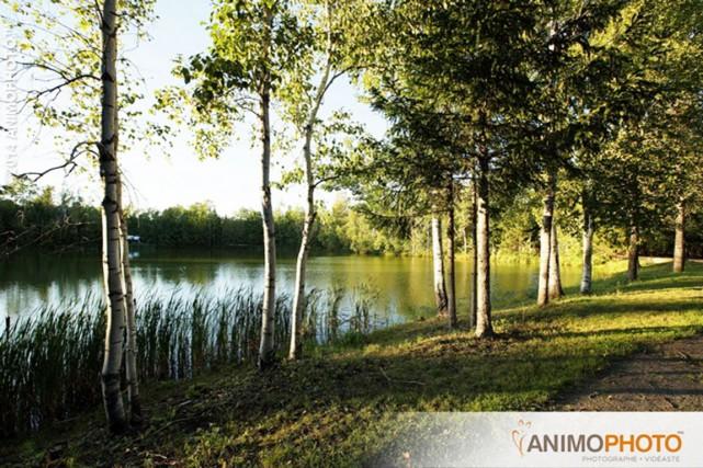 Le site des Pins, à Pintendre... (Animophoto)