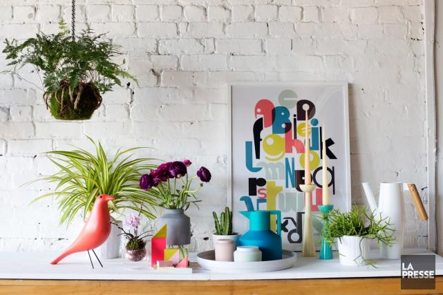 Pouces verts de la déco, la tendance est aux plantes! Sur un meuble ou au sol,... (Photo Olivier Jean, La Presse)