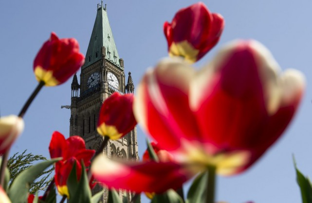 L'été s'est fait voir pour une première fois,... (Adrian Wyld, La Presse Canadienne)