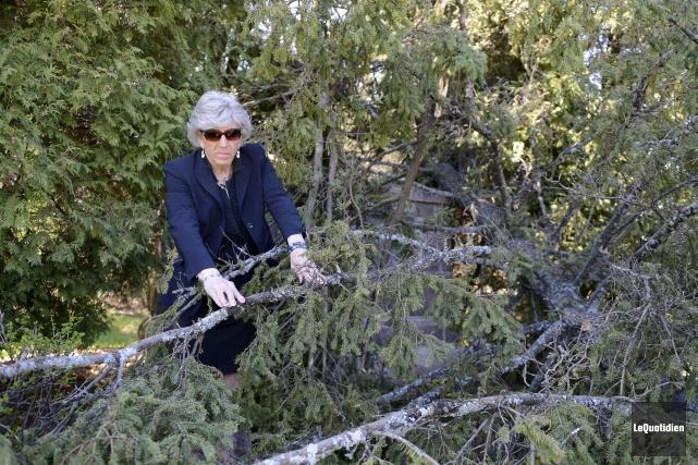 Russel-Aurore Bouchard a constaté les dégâts au cours... ((Photo Le Quotidien, Jeannot Lévesque))