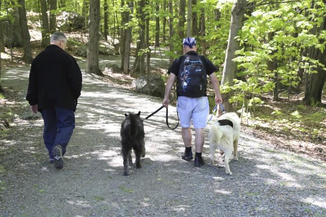 Les parcs où les chiens sont permis, comme... (photo janick marois)