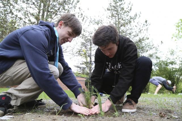 Des élèves ont planté une centaine d'arbres sur... (- photo Janick Marois)