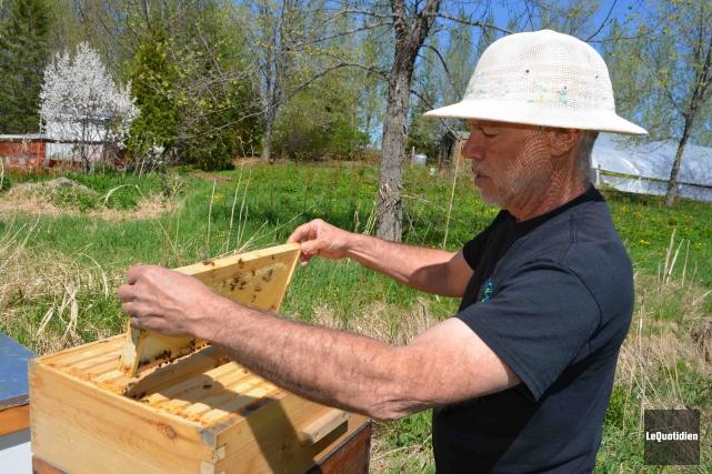 Réjean Côté se passionne pour l'abeille.... (Photo Le Quotidien, Laura Lévesque)