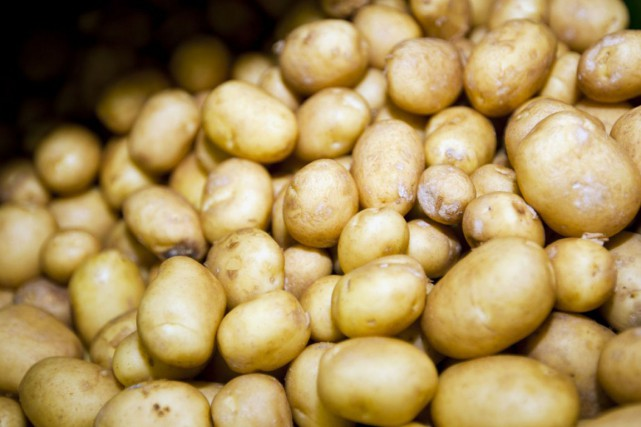 Un autre objet de métal a été découvert dans un sac de pommes de terre de... (PHOTO DIGITAL/THINKSTOCK)