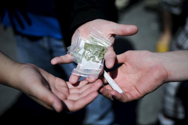 Les jeunes consommateurs de cannabis s'exposent à des... (Photo Eduardo Munoz, archives Reuters)