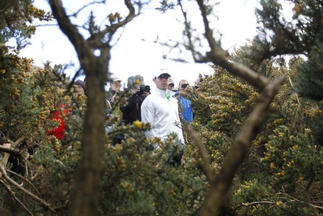 Rory McIlroy cherche sa balle.... (PHOTO PETER MORRISON, AP)