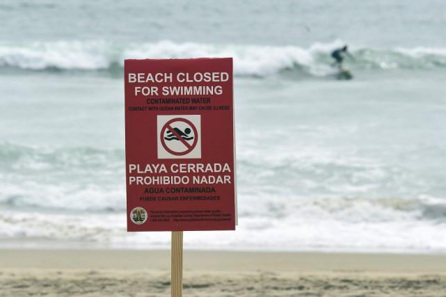 Les plages de la côte ouest américaine qui... (PHOTO FREDERIC J. BROWN, AFP)