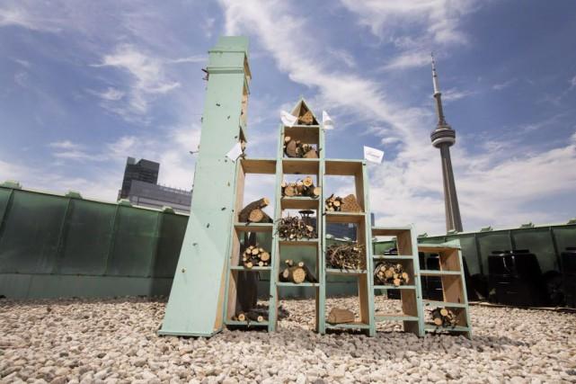 Les cinq premiers «hôtels pour abeilles» ont été... (Photo Fairmont Hotels & Resorts)