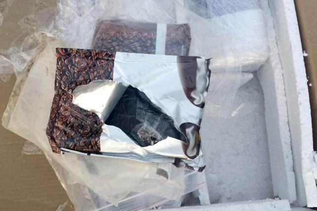 Les boîtes ont d'abord été inspectées à l'aide... (PHOTO COURTOISIE)