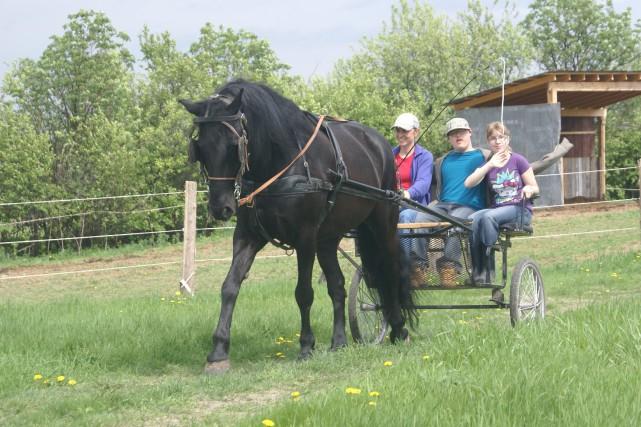 Dans le cadre d'une de leur session d'équitation... ((Photo Mélissa Viau))