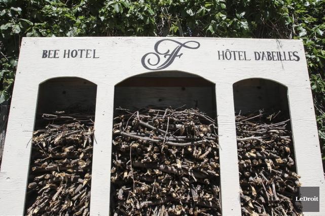 L'«hôtel» d'abeilles, rempli de branches d'arbres, a été... (Patrick Woodbury, LeDroit)
