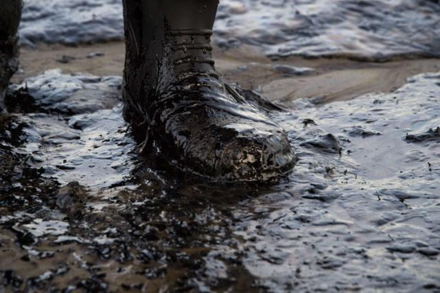 Quelques 740 000 litres de pétrole brut ont été déversés en pleine nature lundi... (Archives AFP)