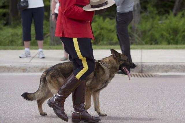 À la mi-mai, la GRC avait été accusée... (Photo Andrew Vaughan, archives La Presse canadienne)