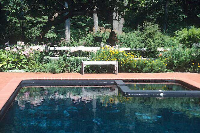 que planter pr s d 39 une piscine larry hodgson horticulture. Black Bedroom Furniture Sets. Home Design Ideas