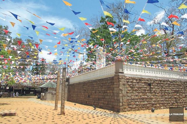 Difficile d'absorber le caractère du Sri Maha Bodhi,... (La Tribune, Jonathan Custeau)