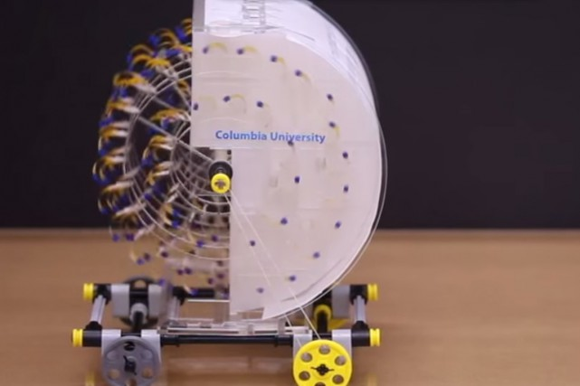 Une équipe de l'Université Columbia à New York... (Image tirée de la vidéo)