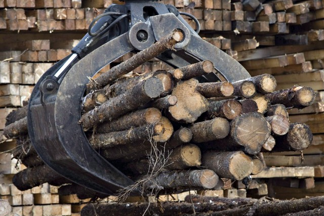 Cela est bien connu, l'économie des ressources naturelles... ((Archives))