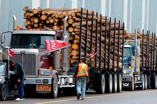 Au total sur la Côte-Nord, l'industrie forestière fournit... (Collaboration spéciale Steeve Paradis)