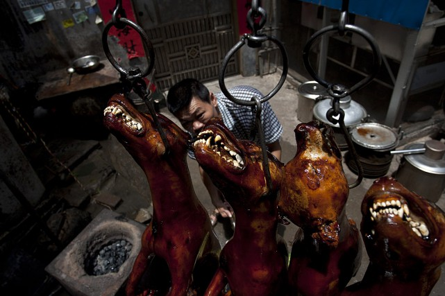 Yulin, dans la région autonome du Guangxi, organise... (PHOTO AFP)