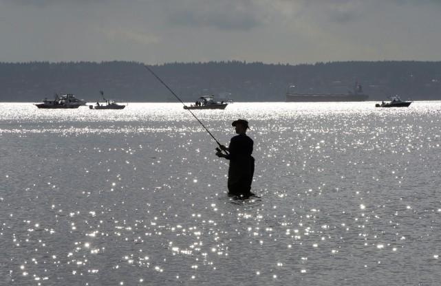 L'auteure implore les pêcheurs sportifs de remettre à... (PHOTO JONATHAN HAYWARD, ARCHIVES LA PRESSE CANADIENNE)
