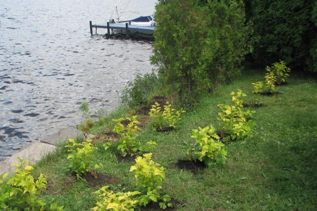 Le projet de lutte aux algues bleu-vert entame... ((Courtoisie))
