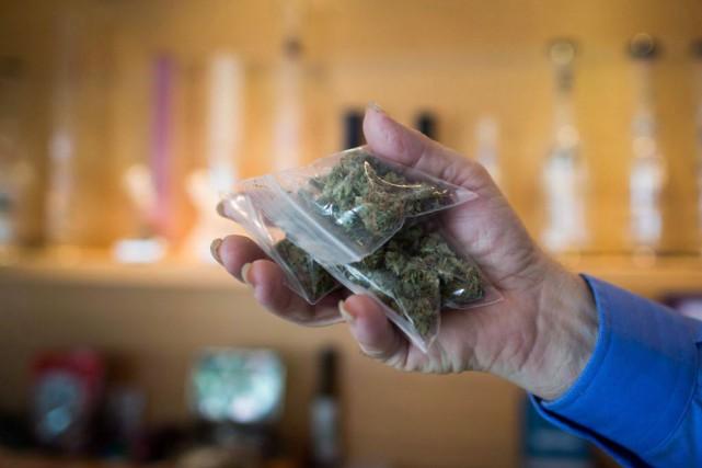 Le cannabis médicinal ne semble pas avoir d'effets secondaires sérieux, selon... (PHOTO DARRYL DYCK, ARCHIVES LA PRESSE CANADIENNE)
