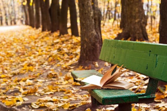 Quelque 589 romans français et étrangers seront publiés en France entre la... (Photo Thinkstock)