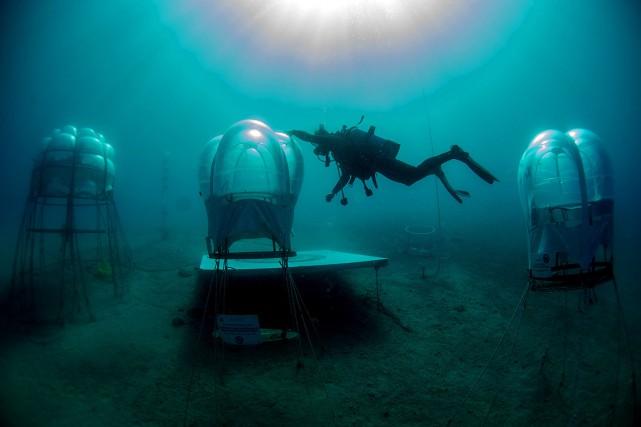 À une centaine de mètres du rivage et... (PHOTO OLIVIER MORIN, AFP)