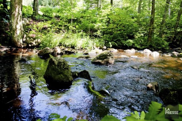 La protection ou la revitalisation d'un cours d'eau... (PHOTO MARCO CAMPANOZZI, LA PRESSE)